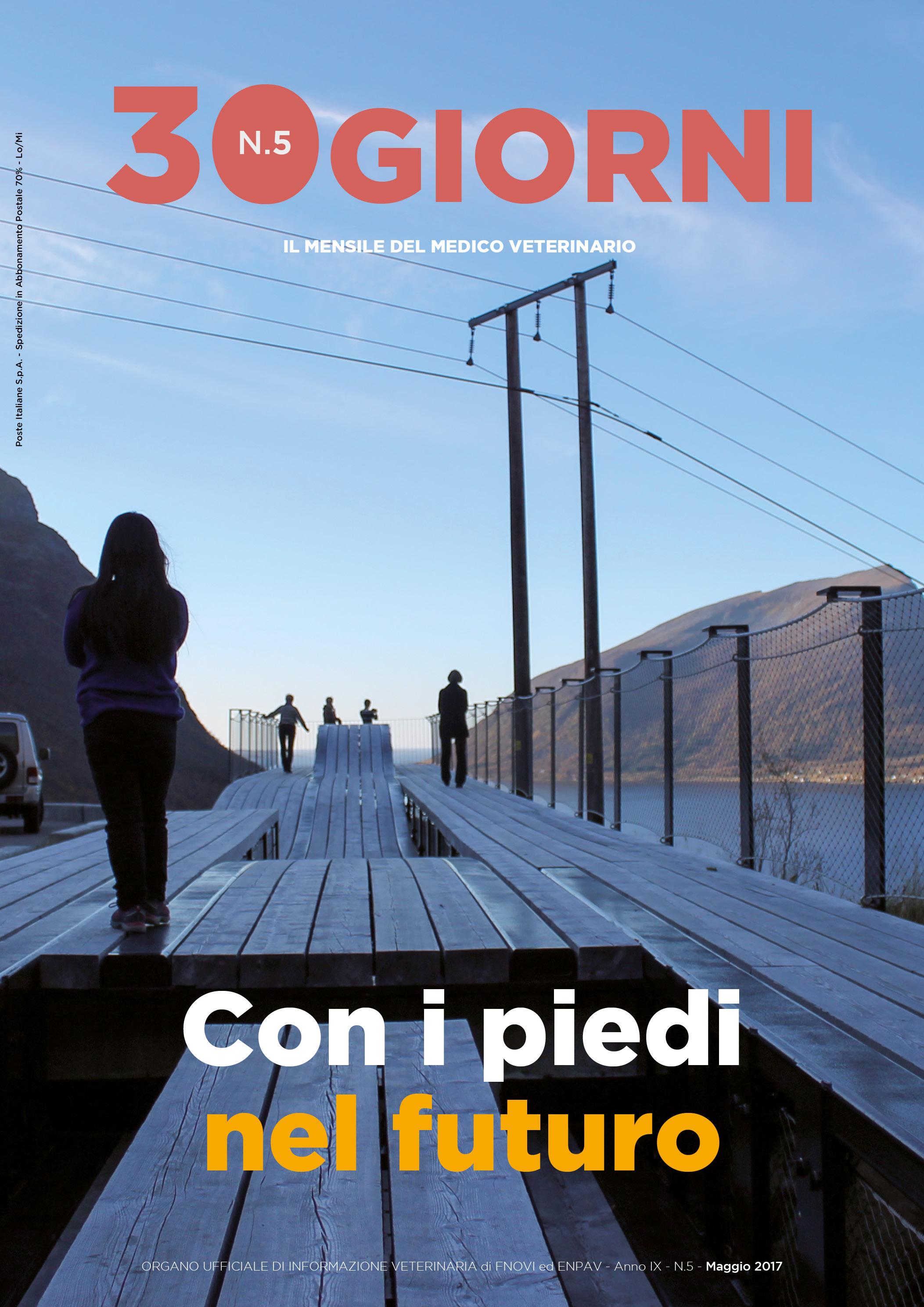 copertina FNOVI maggio 17 .jpg